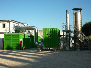 biomassa10