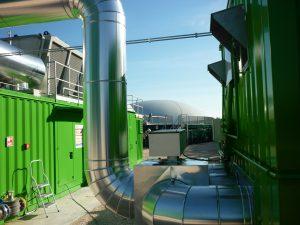 biomassa9